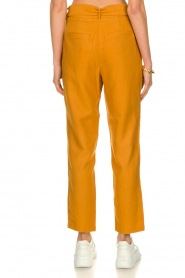 Aaiko |  Trousers Wodon | brown  | Picture 5