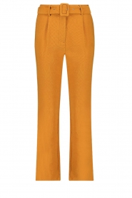 Aaiko |  Trousers Wodon | brown  | Picture 1