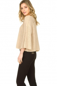 Aaiko |  Sweater with wide sleeves Thalia | beige  | Picture 4