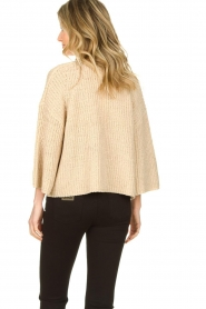 Aaiko |  Sweater with wide sleeves Thalia | beige  | Picture 5
