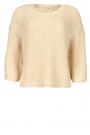 Aaiko |  Sweater with wide sleeves Thalia | beige  | Picture 1