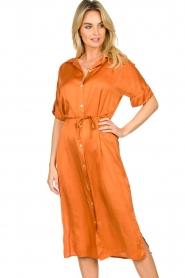 Aaiko |  Midi button dress Sienne | orange  | Picture 4