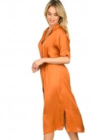 Aaiko |  Midi button dress Sienne | orange  | Picture 6