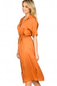 Aaiko |  Midi button dress Sienne | orange  | Picture 5