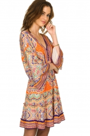 Hale Bob |  Dress with print | multi  | Picture 5