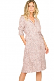 JC Sophie |  Printed dress Dahlia | pink  | Picture 2