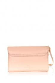 ELISABETTA FRANCHI |  Clutch with golden logo Lizzy | pink  | Picture 5