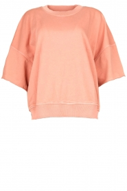 Sweater Ofibird | pink
