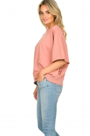 American Vintage |  Sweater Ofibird | pink  | Picture 5