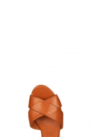 Matteo Pitti : Leather sandals Daphne | brown - img5
