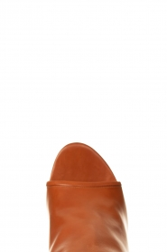 Matteo Pitti | Leather ankle boots Diver | brown  | Picture 5
