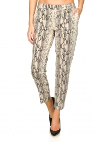 Set |  Snake print pants Chey | beige  | Picture 2