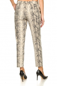 Set |  Snake print pants Chey | beige  | Picture 5