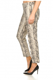 Set |  Snake print pants Chey | beige  | Picture 4
