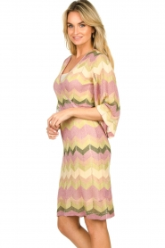 Second Female |  Printed dress Valora | pink  | Picture 5
