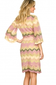 Second Female |  Printed dress Valora | pink  | Picture 6