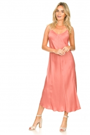 Second Female |  Sleeveless dress Eddy | pink  | Picture 4