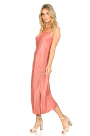 Second Female |  Sleeveless dress Eddy | pink  | Picture 3
