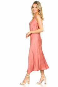 Second Female |  Sleeveless dress Eddy | pink  | Picture 5
