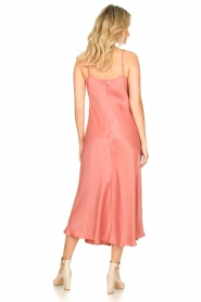 Second Female |  Sleeveless dress Eddy | pink  | Picture 6