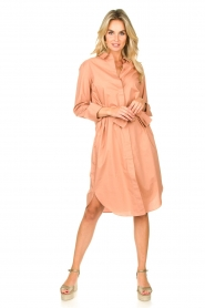 Second Female |  Shirt dress Larkin | pink  | Picture 3