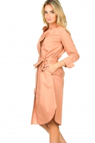 Second Female |  Shirt dress Larkin | pink  | Picture 5