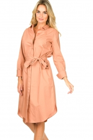 Second Female |  Shirt dress Larkin | pink  | Picture 4