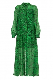 Silvian Heach |  Printed maxi dress Sanquin | green  | Picture 1