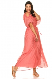 Fracomina |  Maxi dress Electra | pink  | Picture 2