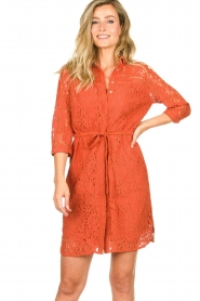 Aaiko |  Lace dress Ladinia leafs| orange  | Picture 4