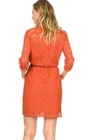 Aaiko |  Lace dress Ladinia leafs| orange  | Picture 6