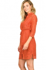 Aaiko |  Lace dress Ladinia leafs| orange  | Picture 5