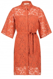 Aaiko |  Lace dress Ladinia leafs| orange  | Picture 1