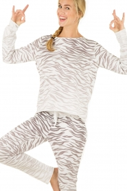Juvia | Trui Zebra | grijs   | Afbeelding 6