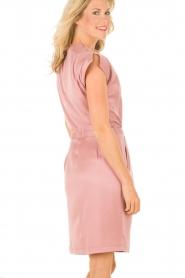 Dante 6 | Zijden jurk Amari | roze   | Afbeelding 5
