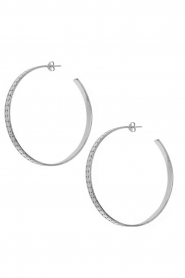 Silver earrings Sunny | silver