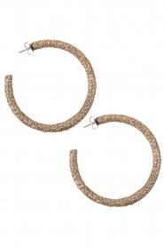 Earrings Openhoop | light gold