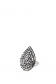 Close to Zen | Zilveren ring Wild Heart Large | zilver   | Afbeelding 1