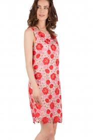 Patrizia Pepe | Kanten jurk Floral | rood & roze   | Afbeelding 4