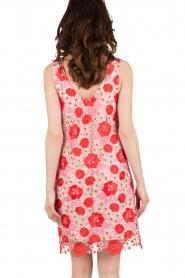 Patrizia Pepe | Kanten jurk Floral | rood & roze   | Afbeelding 5