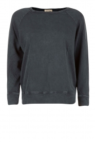 Sweater Jaguar | blauw