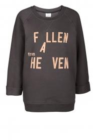 Dante 6 | Sweater Ryder | grijs  | Afbeelding 1