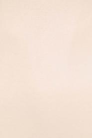Hanro | Naadloze top Hanna | beige  | Afbeelding 5