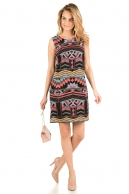 Ana Alcazar |  Short dress Filipy | multi   | Picture 3