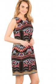 Ana Alcazar |  Short dress Filipy | multi   | Picture 4