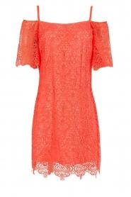 Ana Alcazar | Kanten off-shoulder jurk Flaris | koraal  | Afbeelding 1