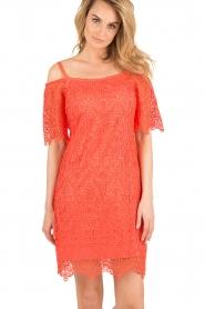Ana Alcazar | Kanten off-shoulder jurk Flaris | koraal  | Afbeelding 2