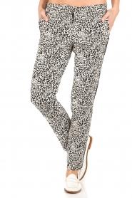 Amatør | Pantalon Stocks | zwart  | Afbeelding 5