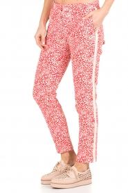 Amatør | Pantalon Stocks | rood  | Afbeelding 4