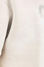 Essentiel Antwerp |  Sweater Nikkie | grey  | Picture 5